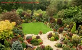 Small Picture Garden Design Garden Design with Garden Shrubs Small Backyard