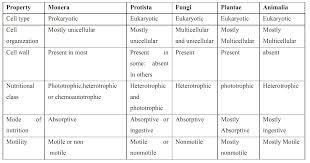 Five Kingdom Classification Chart 72 Judicious 5 Kingdoms Of Classification