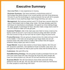 Sample Executive Summary For Resume 5 Sample Executive Summary ...