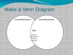 Venn Diagram Of Asexual And Sexual Reproduction Asexual Vs Sexual Reproduction Pptx Powerpoint