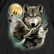 real wolves howling at the moon. Image Is Loading WolfTSHIRTThreeWolvesHowlingMoonTee For Real Wolves Howling At The Moon