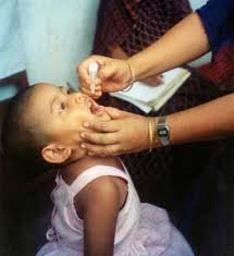 polio essay writework child receiving polio vaccine