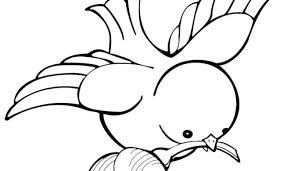 Kleurplaat Vogel
