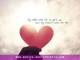 Quotes About Heart Photos Best Quotes Adorable Quotes About The Heart