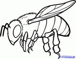 Bee Coloring Pages Printable Coloring How To Draw A Honey Bee Step