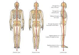 How To Correct Bad Posture Assessment Chart Posture Fix