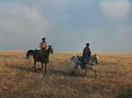 Pin by Wendy Potter on The Virginian 's horses | James drury, The  virginian, Horses