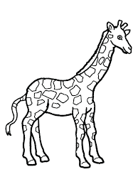 Giraffe Color Pages Lion With Border Coloring Page Giraffe Printable