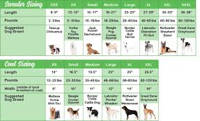 A Chart Of Dogs Sizing Chart Chilly Dog Sweaters