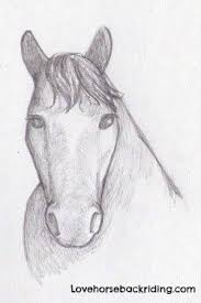 horses drawings in pencil step by step. Wonderful Horses How To Create A Horse Head Drawing Using Pencil Stepbystep  Easy For Horses Drawings In Pencil Step By
