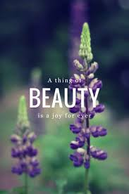 essay on a thing of beauty is a joy for ever a thing of beauty is a joy for ever its loveliness increases it