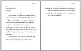 businessman essay ap english essays examples of high school  apa format essay example paper formatting a research paper apa format essay example paper examples essay