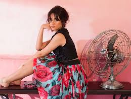 camila cabello is launching a makeup collection with l paris ogiggles
