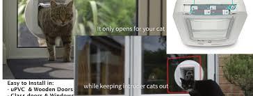 8 best microchip cat flaps
