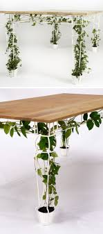 plants for office space. contemporary office keep your home office functional but brimming with plant life by including  one of these desks that feature legs encourage plants to grow tall  and plants for office space