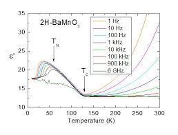 Unusual Ferroelectric And Magnetic Phases In Multiferroic 2h