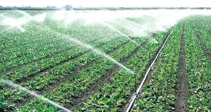 diy drip irrigation system drip irrigation system made from plastic bottles with pump for potted plants diy drip irrigation system