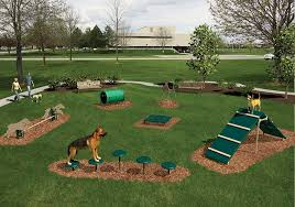 Small Picture Backyard Ideas For Dogs Backyard Design And Backyard Ideas