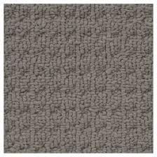 Textured Loop Berber Carpet Democraty Coloured