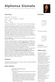 Sales Executive Resume Example Examples Of Resumes