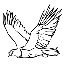 Bald Eagle Coloring Pictures Parkereneindhovenairportinfo