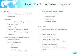 Information Technology Audit Report Template Word