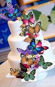 Welcome Summer Rice Paper Butterflies Cake Decorationscupcake