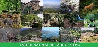 Resultado de imagen para Parque Natural del Monte Aloia