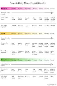 Daily Menu Chart Sample Daily Menu For Babies 6 8 Months Old Freddies Food
