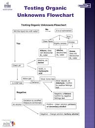 Organic Qualitative Analysis Flow Chart Students Name Lunar Survival