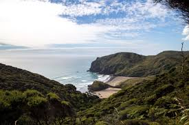 Walk In Pools Anawhata Beach The Best Kept Secret On Aucklands West Coast