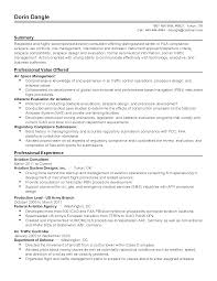 Professional Aviation Consultant Templates To Showcase Your Talent