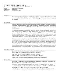 Functional Resume Example Sidemcicek Com