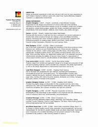 Interior Designer Resume Format Download Unique Sample Page Template