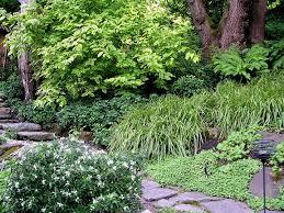 Garden Design Portland Gorgeous The Wild Garden Hansen's Northwest Native Plant Database