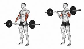 8 arm exercises to build muscle