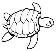 Small Picture Coloring Pages Of Sea Turtles Contegricom