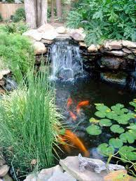 35 impressive backyard ponds and water