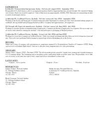 Resume Personal Statement Unique Examples Of Personal Statements For Resumes Who Am I Ideas For An