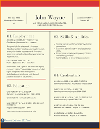 8 Updated Cv Format 2017 Resume Sections