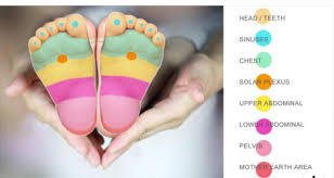 Reflexology For Babies Chart Pin By Lori Mackert On I Love Doterra Baby Reflexology