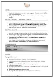 Excellent Work Experience Chartered Accountant Resume Sample Doc(3)