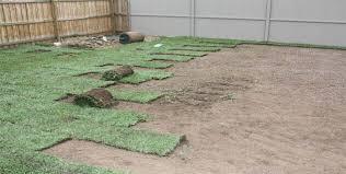 laying lawn turf