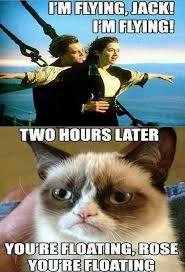 Titanic Meme | Funny Pictures, Quotes, Memes, Jokes via Relatably.com