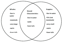 Venn Diagram Editable Venn Diagram Graphic Organizer Editable Tropicalspa Co