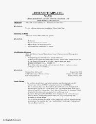 Retail Cover Letter Professional Cover Letter Examples For Cashier