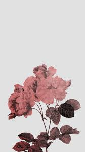 512x909 Vintage Floral Pattern Wallpaper Free IPhone Wallpapers · Download  · Floral ...