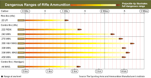 Hunting Rifle Calibers Online Charts Collection