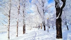 winter trees wallpaper hd. Simple Wallpaper Snowy Landscape Winter Trees Wallpaper With Hd E