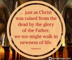Easter Quotes From The Bible Cool Divine 48 Easter Bible Verses On The Resurrection Of Christ With